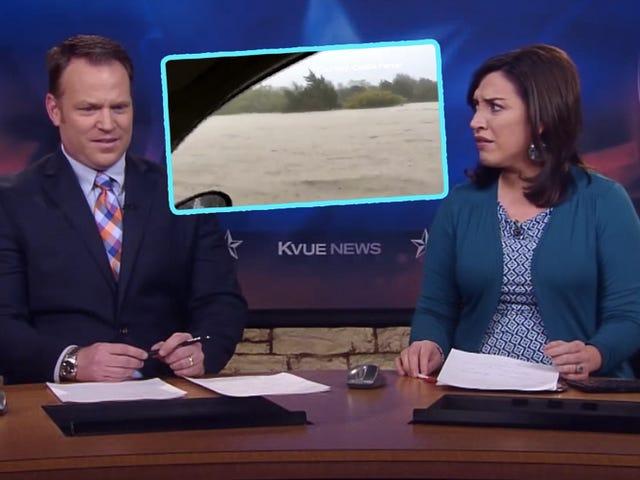 Manusia Terjejas Dalam Pokok Selepas Banjir Kereta Memberi Wawancara TV Cuaca Terbaik Dari Semua Masa
