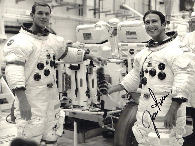 Ay Rovers'ları bile Kişiselleştiren Bir Dokunuş Gerektirir