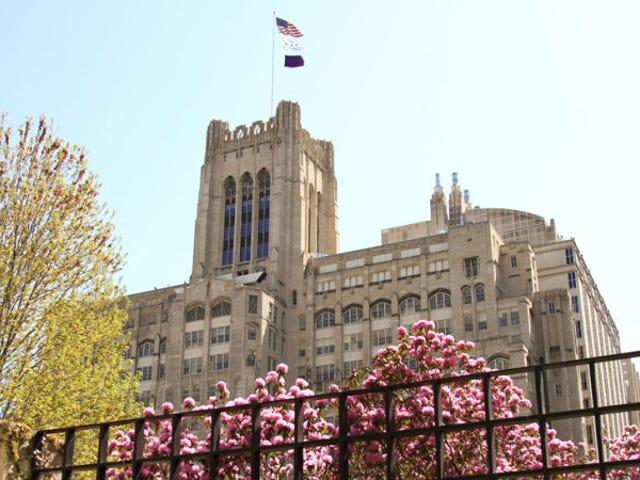 Northwestern Philosophy Professor Resigns After Sexual Harassment Investigation