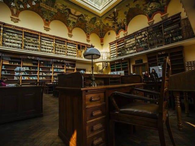 Library porn, Ukrainian style
