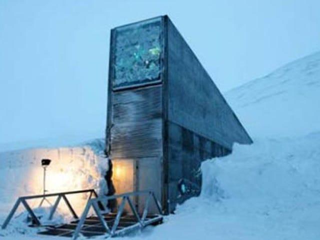 A Peek Inside the Doomsday Seed Vault