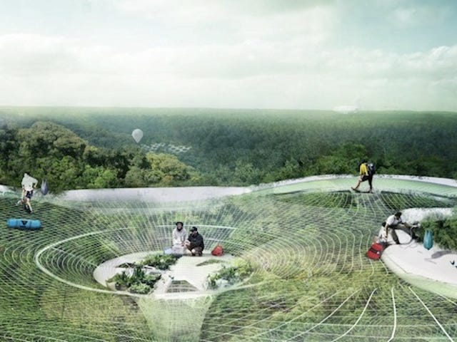 Aerial canopies would let you explore the Amazon rainforest from above