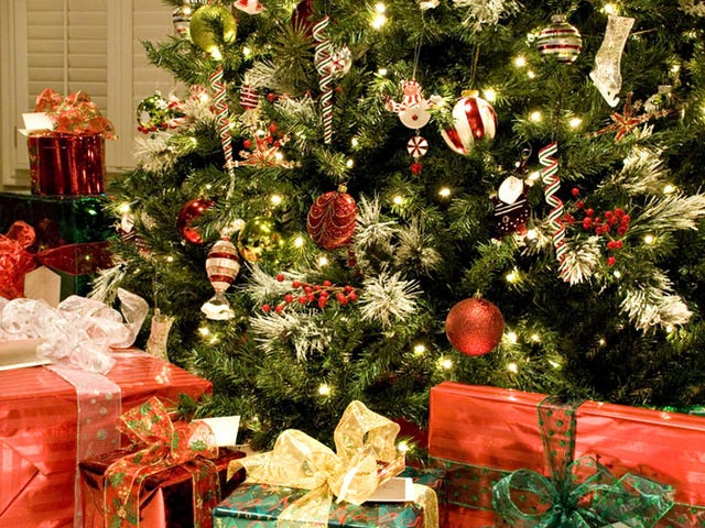 Your Christmas Tree Is Infested with Something Called 'Bark Lice'