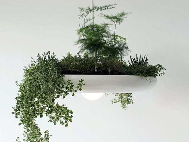 Clever Light Fixture Brings Hanging Gardens to Your Home