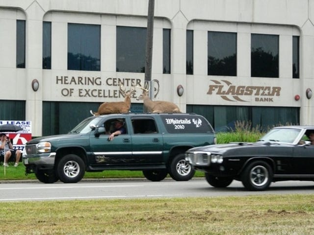 Yes, That's A Yukon With Stuffed Deer On The Roof