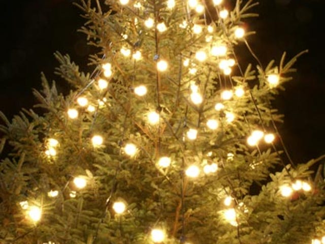 """A Homeless Christmas"": Less Than Merry"