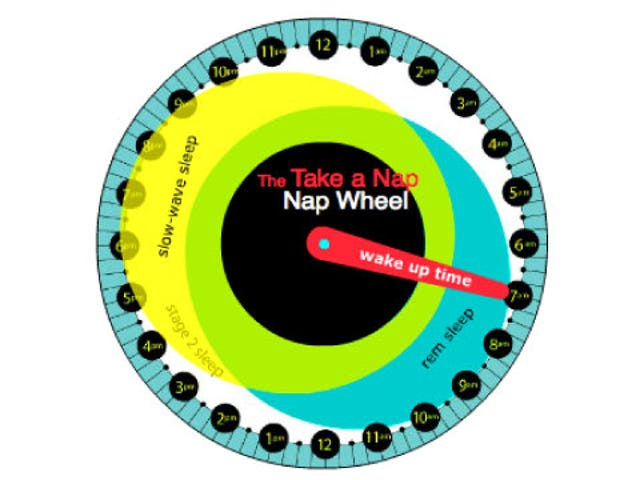 Calculate the Best Time to Nap with This Interactive Nap Wheel