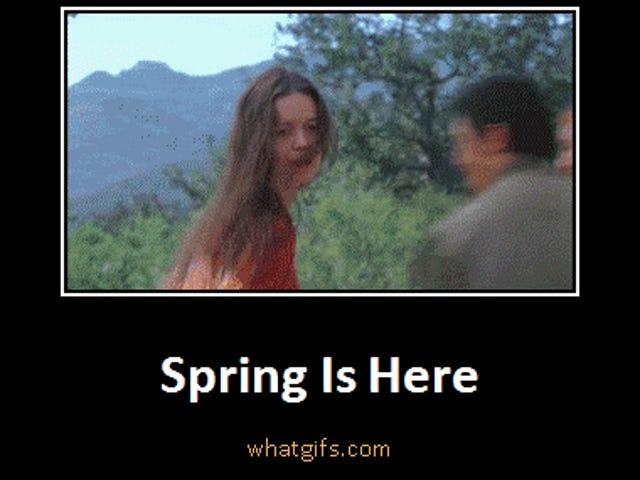 Saturday GIF Party - Springtime for Kinja