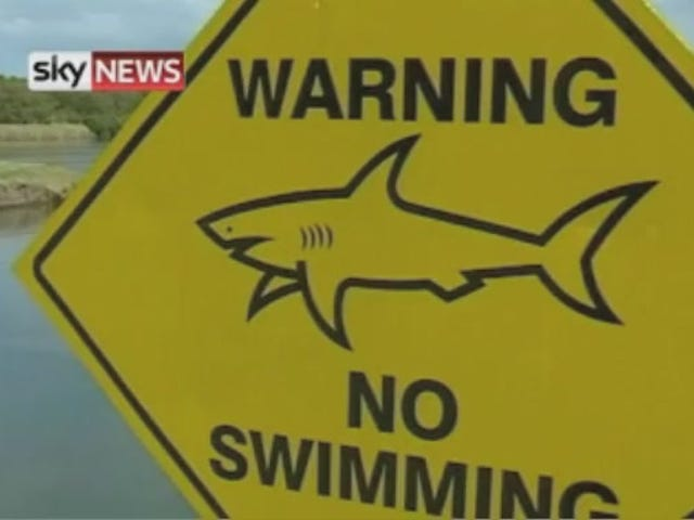 Australian golf course overrun with bull sharks