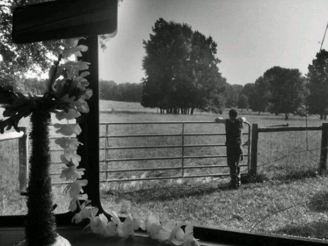 The Walking Dead Set Picture