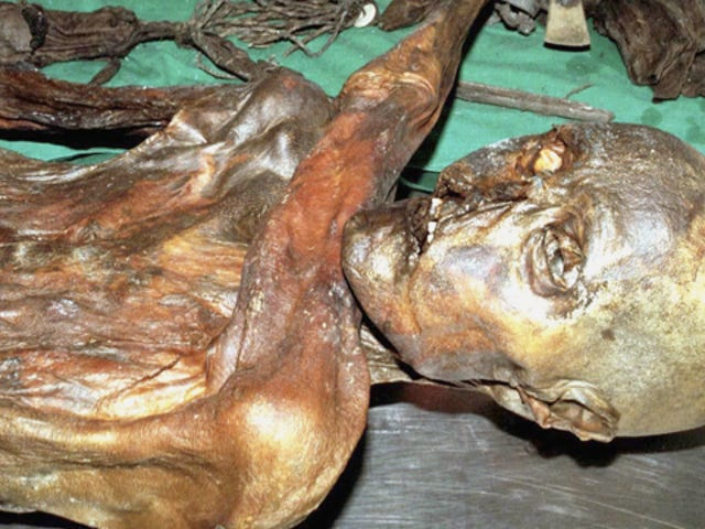 Scientists discover 5200-year-old iceman's final meal