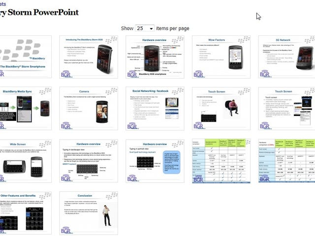 Official BlackBerry Storm Documents Leaked