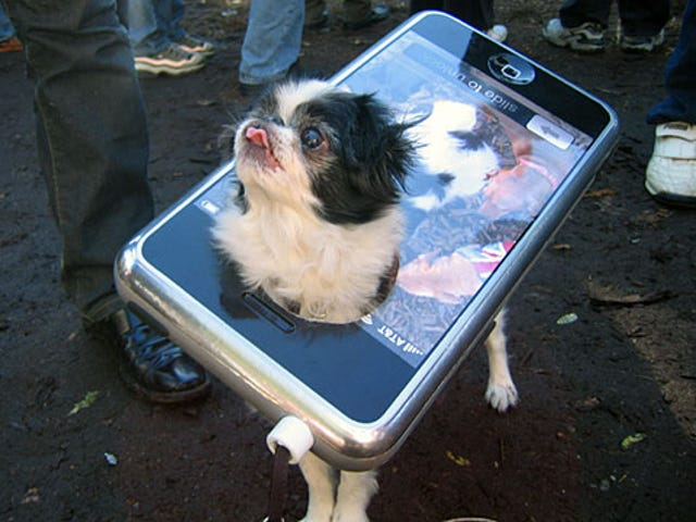Dog Dresses Up as iPhone for Halloween Celebration