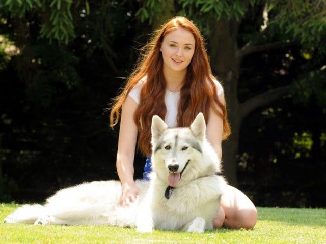 Sansa Stark's actress adopted her real-life direwolf