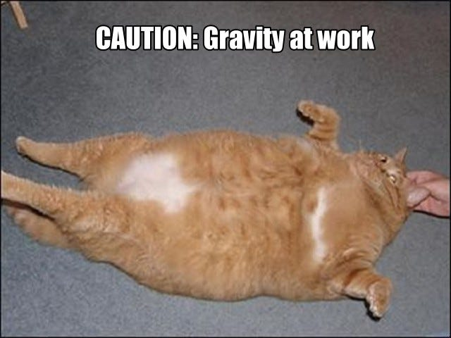 Gravity : random thoughts, only one cat picture
