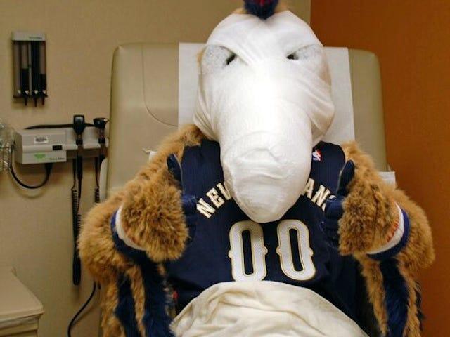 Not Helping, Pelicans