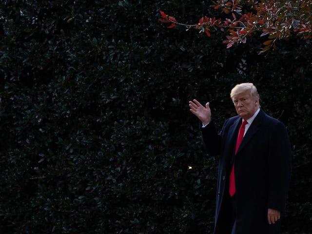 特朗普总统感到害怕,禁止调味的vape可能会让他投票