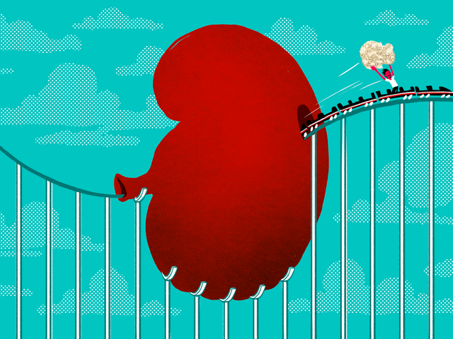 How a Roller Coaster Can Help You Pass a Kidney Stone