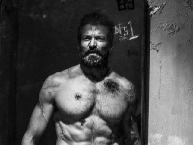 Vi skar efter att ha sett denna musikaliska resa genom Wolverines liv