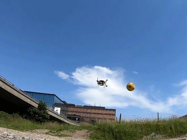 Les pierres lancées ne menacent pas ces drones qui maîtrisent le ballon chasseur