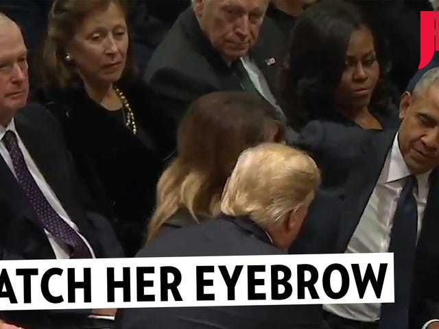 Beobachte ihre Augenbraue