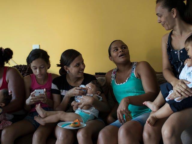 WHO yang salah untuk mengatakan Zika tidak lebih lama darurat