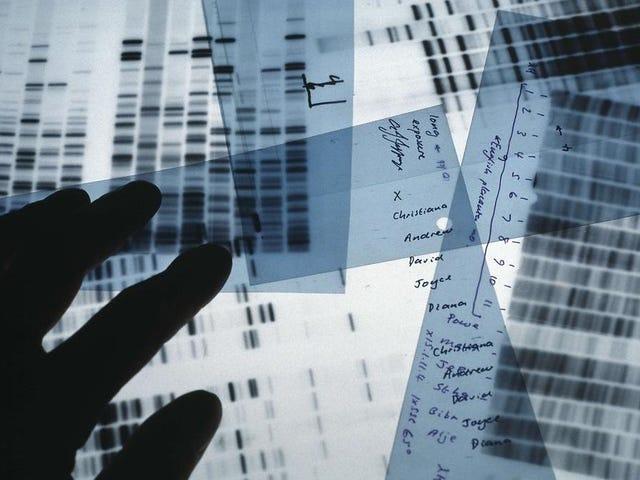 Google a enseigné une IA pour comprendre le génome humain