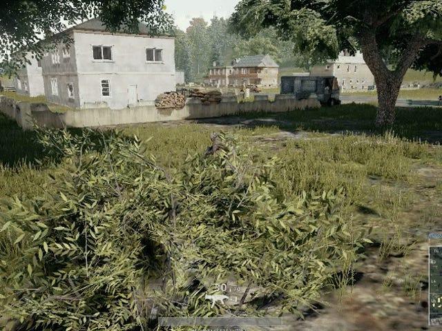 Ett triks for å bli bedre på Battlegrounds : busk