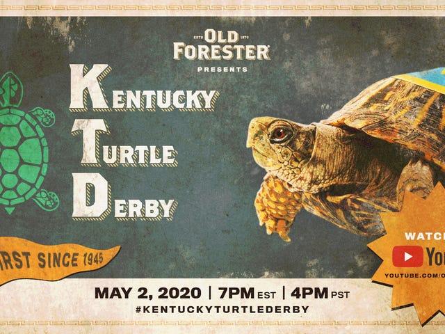 Tomorrow's Kentucky Derby will be slower, smaller, greener