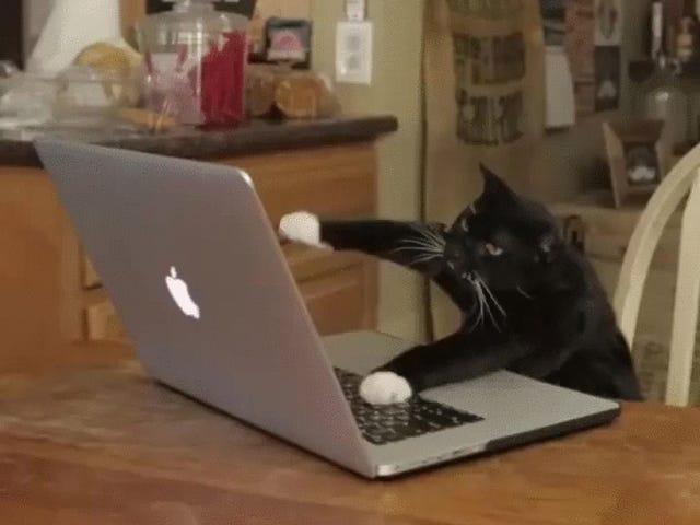 Laptoppositelock