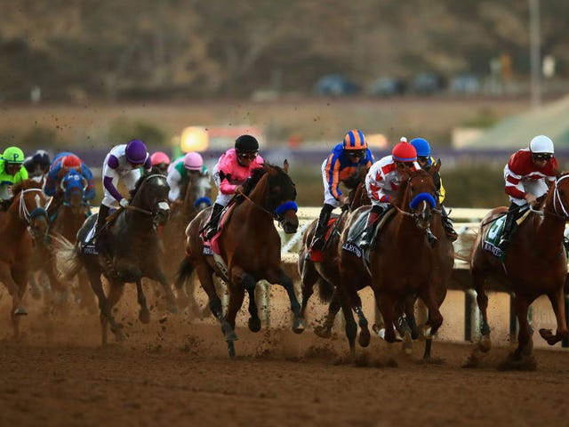 Massachusetts Accidentally Bans, Hastily Unbans Horse Racing In One Week