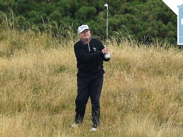 Another President Cyber Golfer
