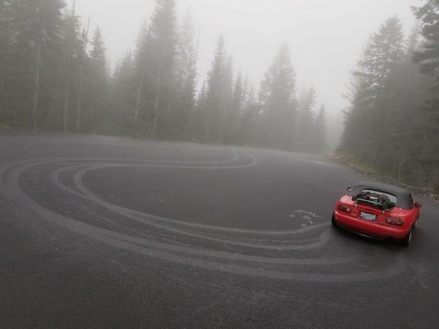 Best of the PNW -Mt. Rainier adventure