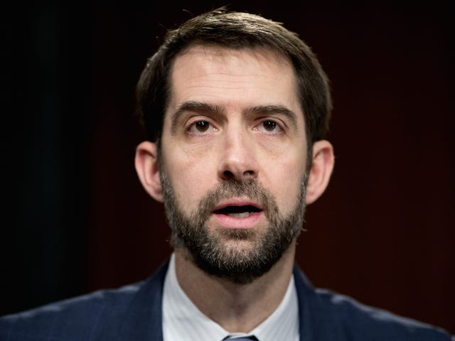 Sen. Tom Cotton Got Dunked on By a 7-Year-Old at His Town Hall Meeting