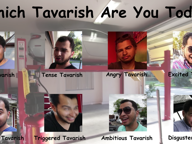 Which Tavarish Are You Today?