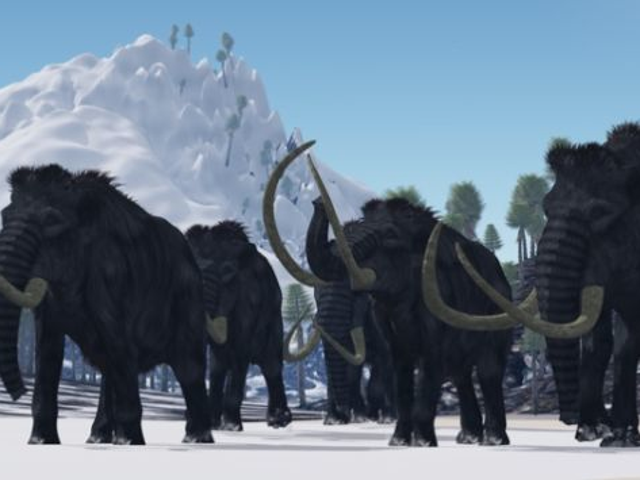 Why the Last Wooly Mammoths on Earth Went Extinct