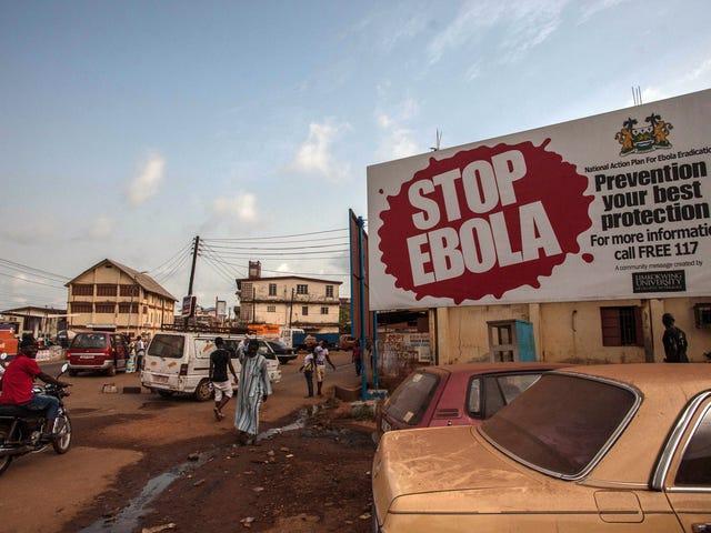 Vi kan nå vite hvorfor Ebola Holder Popping Up i Vest-Afrika