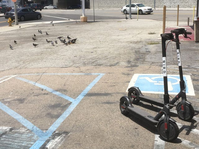 Bird, A Company That Rents Scooters, Reportedly Now Valued At $ 2 Billion