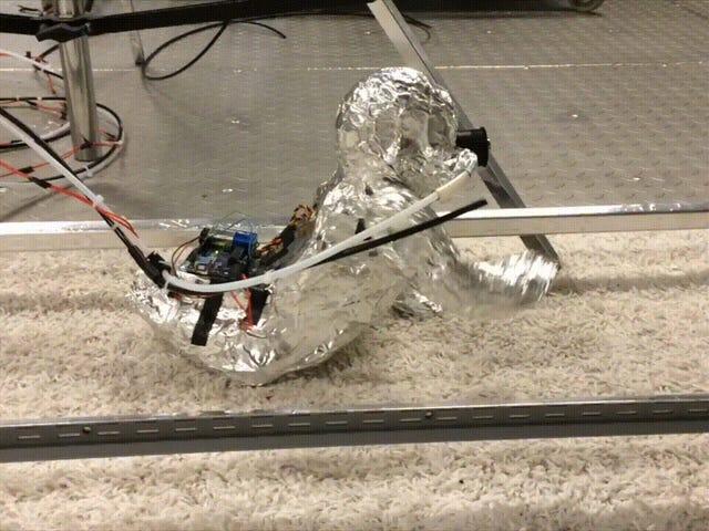 一个令人毛骨悚然,爬行的机器人宝贝提醒我们地毯是恶心的