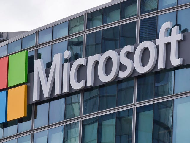 Microsoft Workers Reportedly Confront CEO With Petition Demanding Termination of ICE Contract