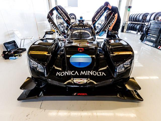 Vi är här för att se America's Raddest Sports Cars på USAs F1 Track