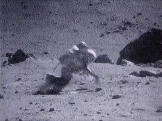 Saturday GIF Party - The important thing is to get up Edition