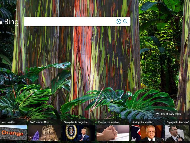 Bien, hay al menos una cosa que Bing funciona mejor que Google: la desinformación
