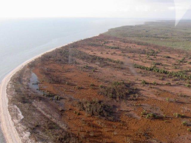 Το Everglades πήρε ένα κτύπημα από τον τυφώνα Irma