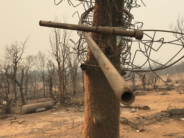 California's Viral Fire Tornado Has Scientists Searching For Answers
