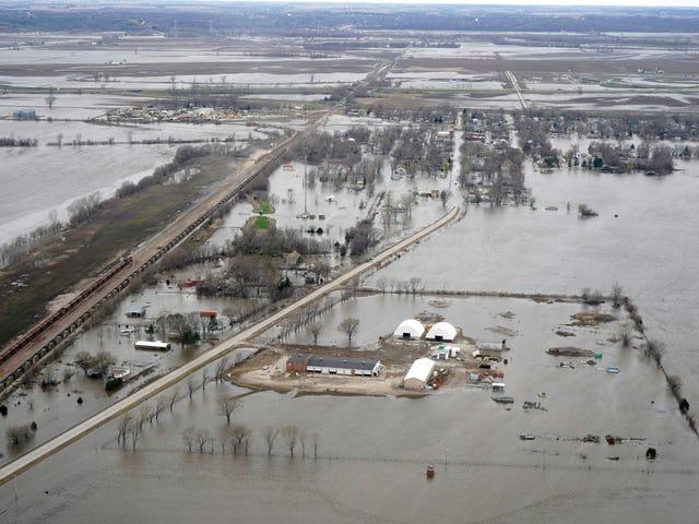 史蒂夫金告诉爱荷华人遭遇洪水不要担心,因为可能所有的雨都会让沙漠变成绿色