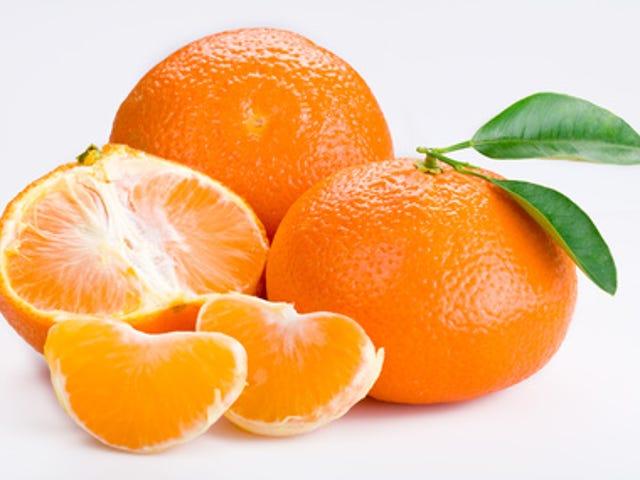 Best Orange Citrus Fruit