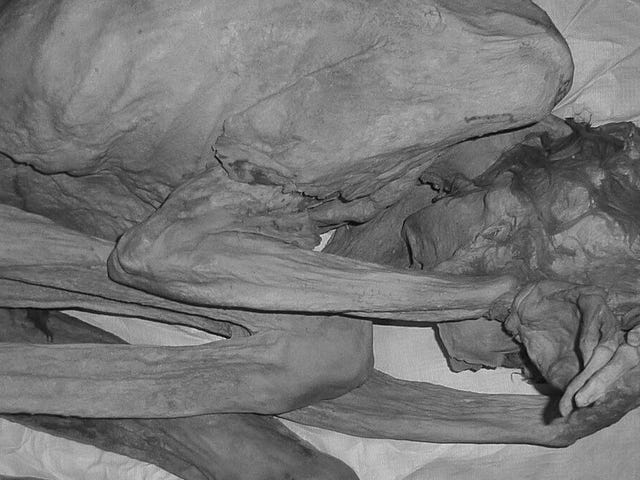 5,000-Year-Old Mummy Is Earliest Known Tattooed Woman