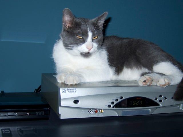 FCC ต้องการหยุด บริษัท เคเบิลไม่ให้ริปคุณบนกล่องเซ็ตท็อป