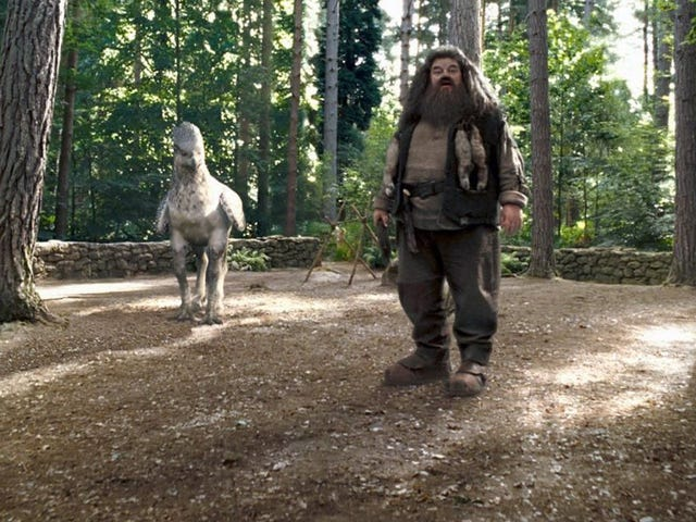 Hagrid Leads a Magical Ride in the Newest Wizarding World of Harry Potter Attraction